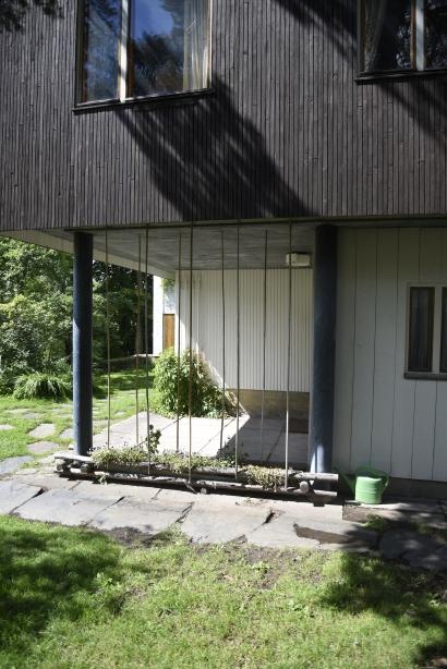 enkel spaljé av bambupinnar i Alvar Aaltos trädgård.