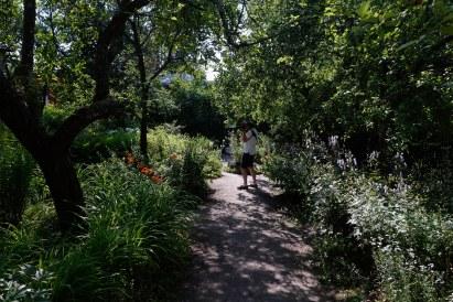 Fredrika Runebergs trädgård i Borgå.