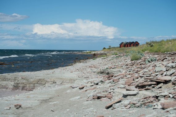 strand med sten_EEK2834